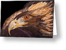Golden Eagle Close Up Painting By Carolyn Bennett Greeting Card