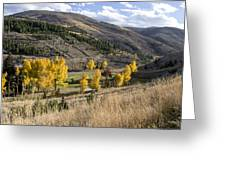 Golden Fall In Montana Greeting Card by Dana Moyer