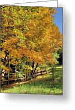 Golden Fenceline Greeting Card