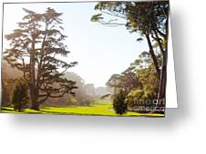 Golden Gate Park San Francisco Greeting Card by Artist and Photographer Laura Wrede
