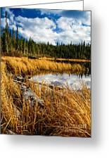 Golden Grass At Red Rocks Lake Greeting Card
