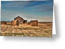 Golden Hay Greeting Card by Lisa Knechtel