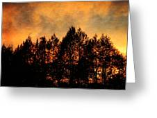 Golden Hours Greeting Card