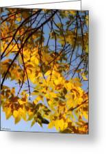 Golden Leaf Cascade Greeting Card