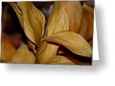 Golden Leafed Abstract 2013 Greeting Card
