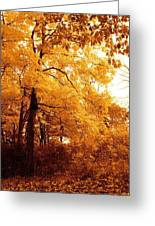 Golden Leaves 2 Greeting Card by Jocelyne Choquette