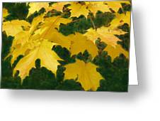 Golden Leaves Floating Greeting Card