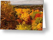 Golden Leaves Greeting Card by Jocelyne Choquette