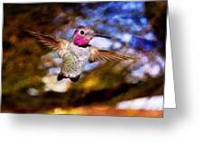 Golden Light Hummingbird Flight Greeting Card