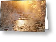 Golden Light Greeting Card by Sylvia  Niklasson
