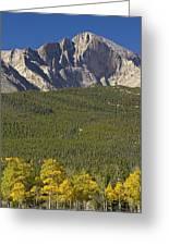 Golden Longs Peak View Greeting Card