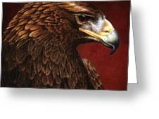 Golden Look Golden Eagle Greeting Card
