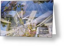 Golden Mean Holga Garden 1 Greeting Card by Carolina Liechtenstein