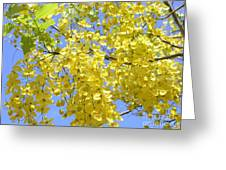 Golden Medallion Shower Tree Greeting Card