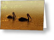 Golden Morning Greeting Card
