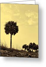 Golden Palm Silhouette Greeting Card