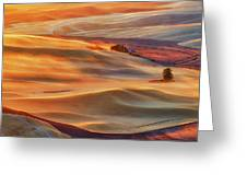 Golden Palouse Greeting Card