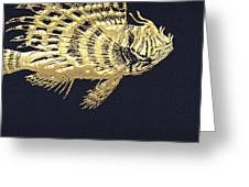 Golden Parrot Fish On Charcoal Black Greeting Card