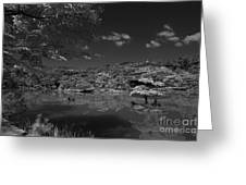 Golden Pavilion In Infrared Greeting Card