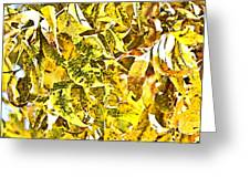 Golden Pecan Leaves Abstract Greeting Card
