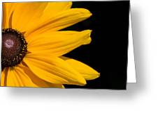Golden Petals Greeting Card