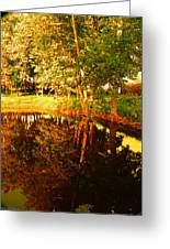 Golden Pond 4 Greeting Card
