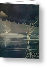 Golden Pond Lily Greeting Card by Bedros Awak