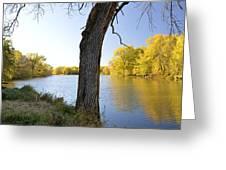 Golden Pond Panorama Greeting Card