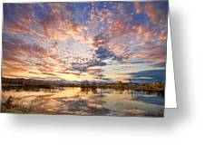 Golden Ponds Scenic Sunset Reflections 4 Greeting Card