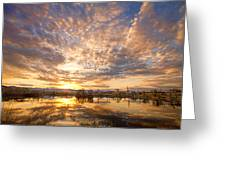 Golden Ponds Scenic Sunset Reflections 5 Greeting Card