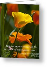 Golden Poppy Floral  Bible Verse Photography Greeting Card