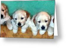 Golden Puppies Greeting Card by Michelle Calkins