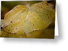 Golden Redbud Heart Greeting Card