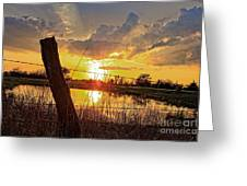 Golden Reflection With A Fence Greeting Card by Robert D  Brozek