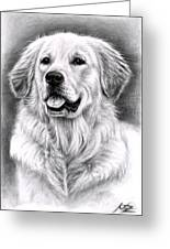Golden Retriever Spence Greeting Card