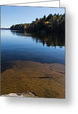Golden Ripples Bedrock - Fall Reflection Tranquility Greeting Card