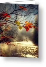 Golden River Greeting Card