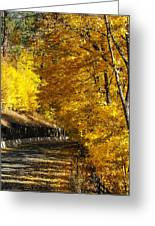 Golden Road Greeting Card