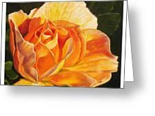 Golden Rose Blossom Greeting Card