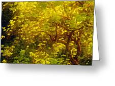 Golden Spring Greeting Card