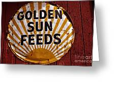 Golden Sun Feeds Greeting Card