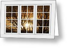 Golden Sun Silhouetted Tree Branches White Window View Greeting Card