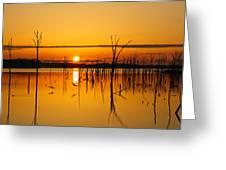 Golden Sunrise IIi Greeting Card