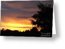 Golden Sunset 3 Greeting Card