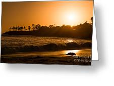 Golden Sunset At Laguna Greeting Card