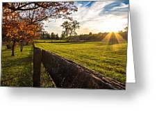 Golden Sunset At The State Arboretum Of Virginia Greeting Card