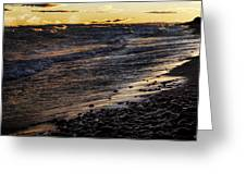 Golden Superior Shore Greeting Card