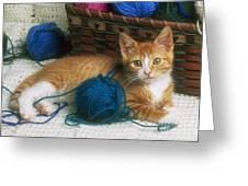 Golden Tabby Kitten Greeting Card