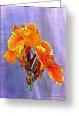 Golden Torch Ginger Greeting Card