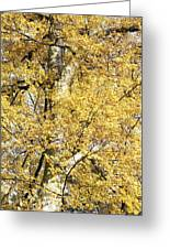 Golden Tree Greeting Card